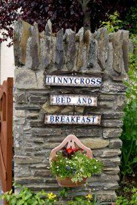 A hidden gem - Tinnycross House B&B Floralesque Review 2