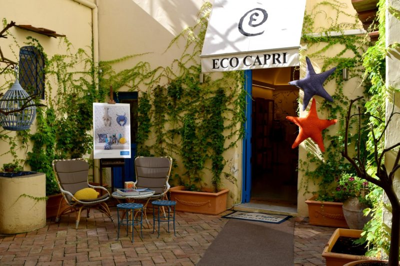 Eco Capri & the story behind the brand