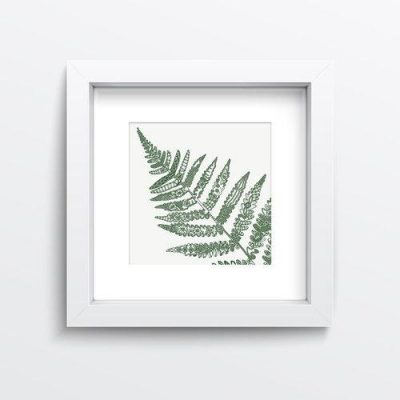 Petal to Petal Lace Fern (Small) Limited Edition Giclee Print