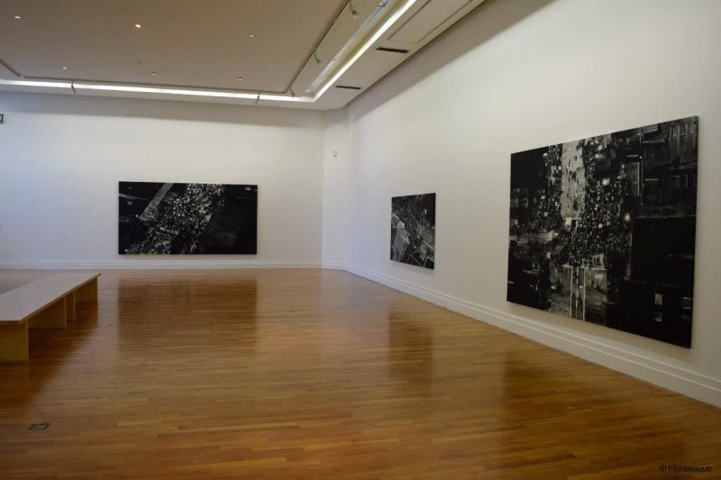 Daphne Wright Exhibit | RHA Gallery, Dublin
