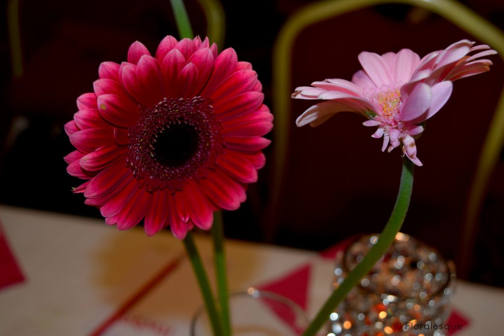 ITWBN 2nd Birthday Bash Speakers Floralesque 13