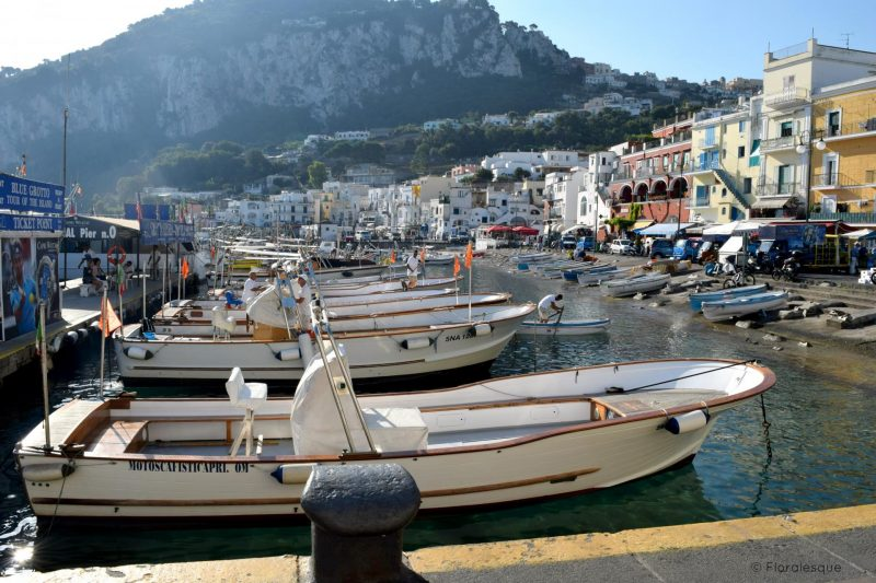Capri In a Day What to Do and See Floralesque 17